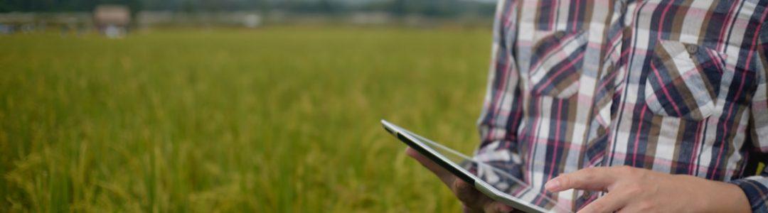 Landwirt mit Tablet im Feld